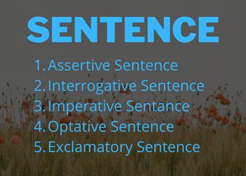 Sentence কাকে বলে
